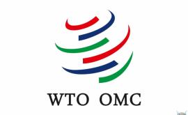 Молдова примет участие в министерской конференции ВТО в Буэнос-Айресе