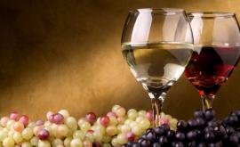"""""""Vinul unei nopți de iarnă"""": La Vernisajul Vinului simți fiecare nuanță a soiurilor autohtone"""