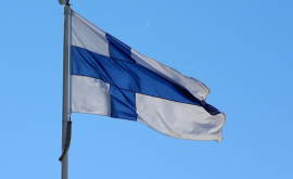 Moldova și Finlanda vor extinde comerțul bilateral
