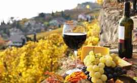 Tриумф молдавских виноделов на рынке Объединённых Арабских Эмиратов