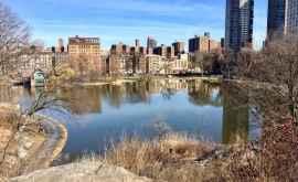 Температура в Нью-Йорке достигла рекордной отметки