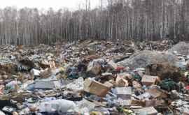 Locuitorii din Cimişlia, sufocaţi de o gunoişte ilegală