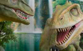 Третий глаз, слух изо рта и странные черепа: Как выглядели древние ящеры?