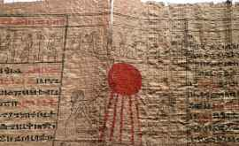 Detalii interesante despre practicile medicale antice se conțin într-un papirus, tradus recent