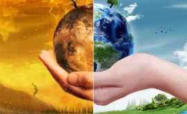 Как спасти планету от глобального потепления?