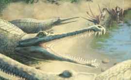 Un crocodil din perioada Jurasic a fost identificat după 250 de ani