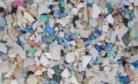 În organismul a 97% dintre copiii germani au fost găsite particule de microplastic
