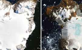 NASA a înregistrat un record al vitezei de topire a gheții în Antarctica