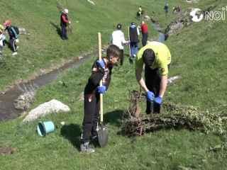 Circa 2000 de puieţi au fost plantaţi la Ţîpova (VIDEO, FOTO)