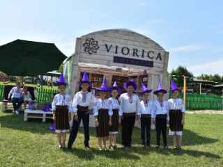 """""""Viorica-Cosmetic"""", în premieră, a participat la Festivalul Familiei de la VATRA (VIDEO)"""