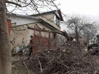"""Ceban: """"Autoritățile municipale intervin în forță pentru a înlătura consecințele furtunii"""""""