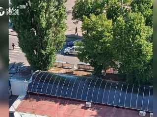 Copacii de la Botanica s-au transformat în prizonierii tarabelor vechi și ruginite (VIDEO)