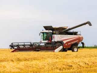 Combinele Rostselmash, un ajutor de neînlocuit pentru agricultorii din R. Moldova (VIDEO)