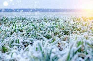 prognoz-pogody-na-12-yanvarya-temperatury-do-6-gradusov