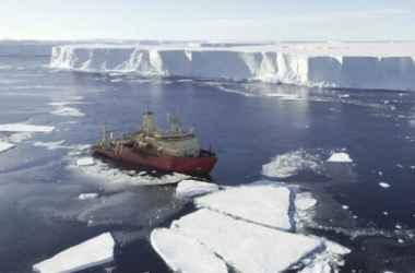 pod-lidami-antarktidy-obnaruzheny-udivitelinye-organizmy