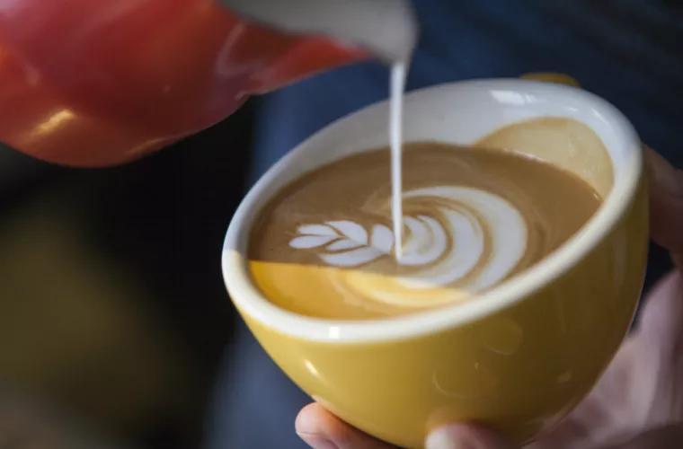 Почему нельзя пить кофе с молоком