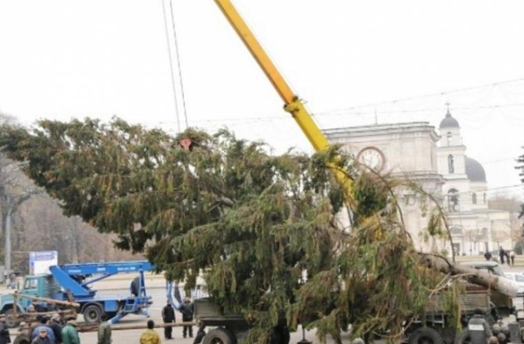 Pomul de Crăciun în curînd va fi evacuat din centrul Chişinăului