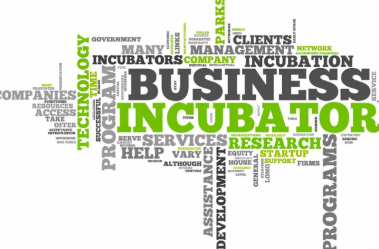 La Cahul va fi deschis un incubator de afaceri
