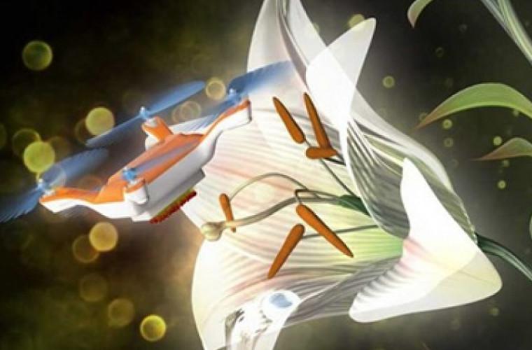 Bun venit în viitor! Dronele responsabile de polenizare!
