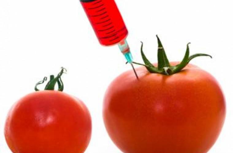 Roșiile modificate genetic pot deveni din nou gustoase. Avem oare nevoie de acest lucru?