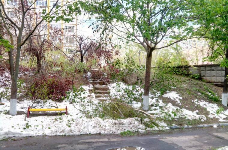 Expert, despre acoperirea prejudiciului cauzat de ninsoare