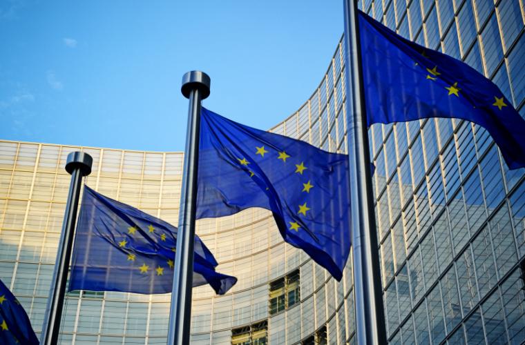 PD va reuși să convingă Bruxelles-ul de legalitatea votului mixt – prognoză