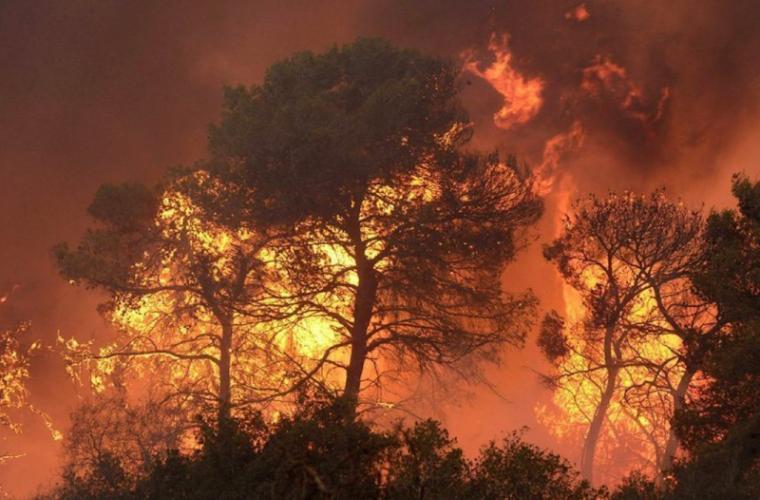 Incendiile de pădure au creat un focar uriaș în vestul Canadei