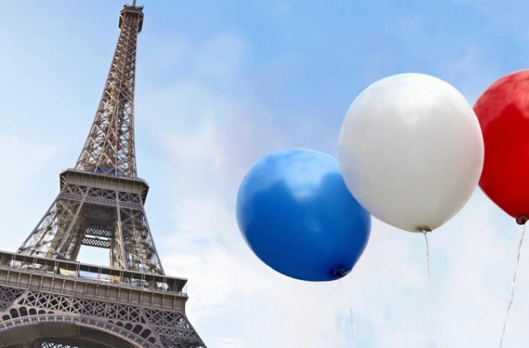 Хищники в парижском небе для отпугивания голубей
