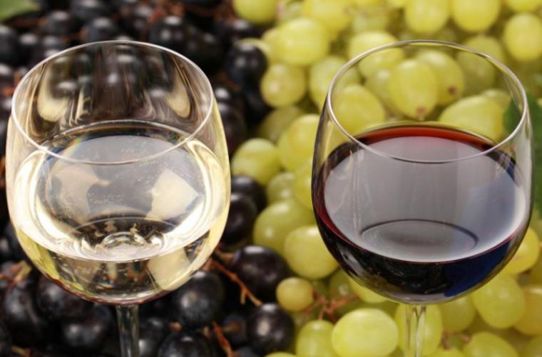 Sectorul vitivinicol a renăscut, opinii
