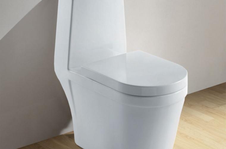 Cel mai scump WC din lume a fost prezentat în SUA (FOTO)