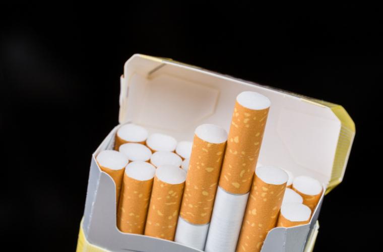 Cîinele antitabac al Vămii a găsit țigări nedeclarate în autoturismul unui conațional