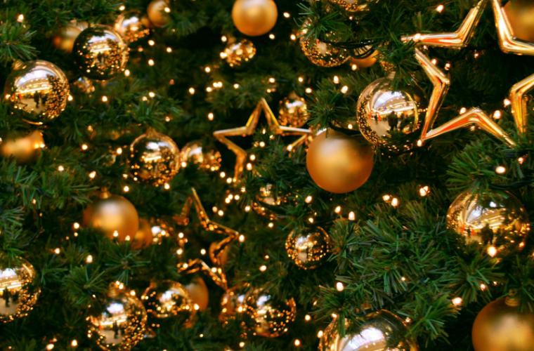 În Valea Trandafirilor va apărea un pom de Crăciun