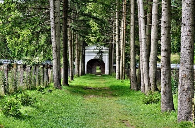 Mănăstirea Slatina – necropola domnească a familiei Lăpușneanu (FOTO)