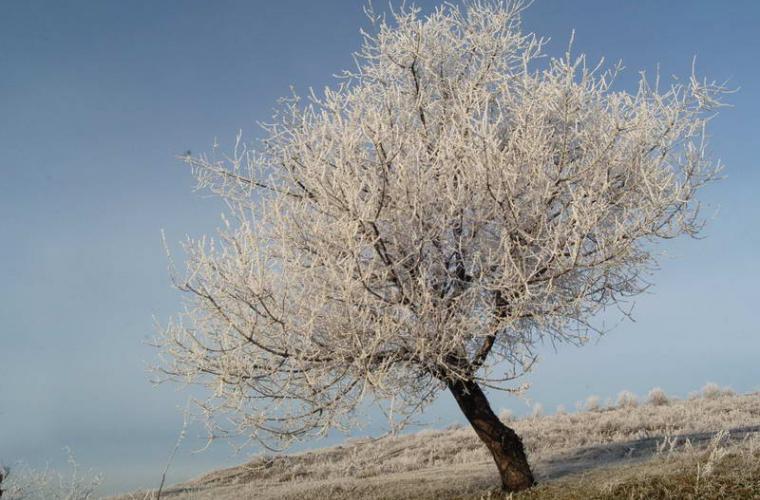 Prognoza meteo pentru 12 decembrie