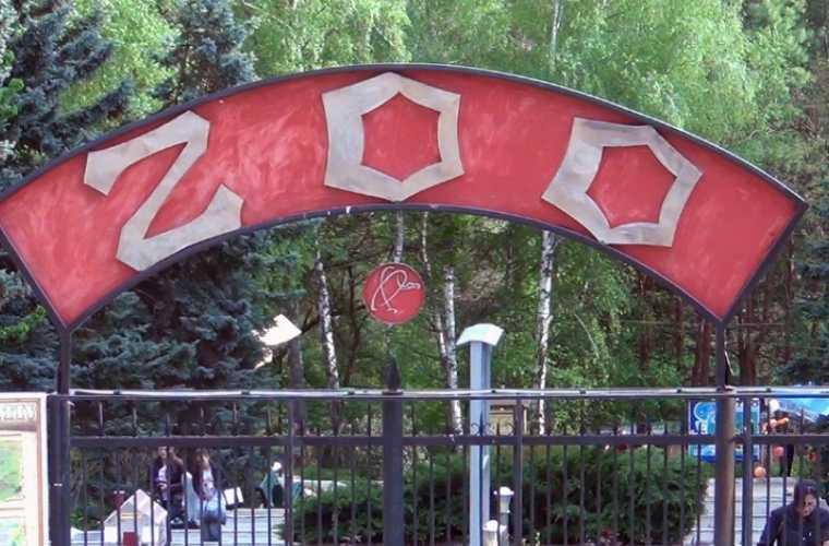 Cea de-a doua viață a Grădinii Zoologice din Chișinău