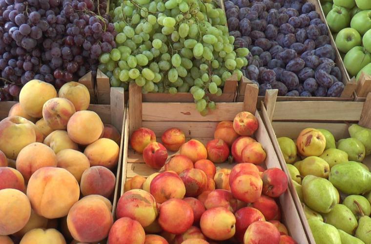 Cîte fructe moldovenești au fost exportate în CSI și în UE în 2017