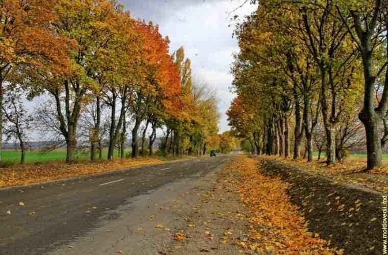 Drumurile Moldovei. Partea a III-a