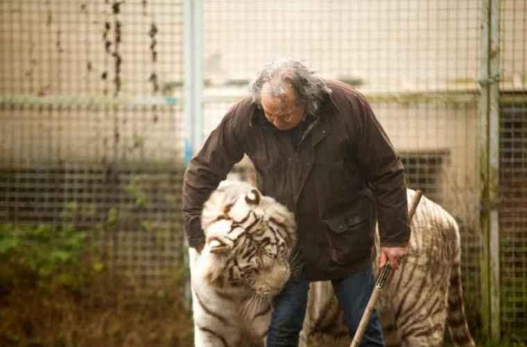 Curajul unui francez de 68 de ani: locuiește cu cinci tigri și doi lei (FOTO)