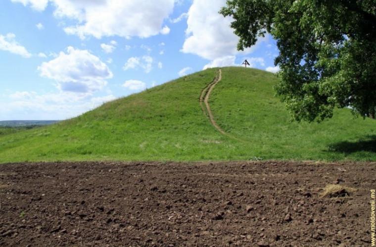 """""""O Sută de Movile"""" – un monument unic al naturii (FOTO)"""
