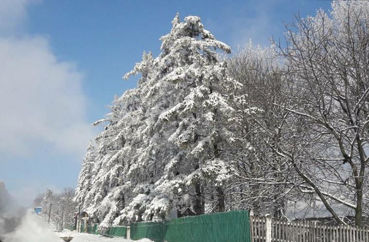 Nordul Moldovei deosebit de frumos (FOTO)