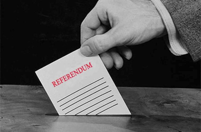 Anularea sistemului mixt de vot: a fost constituit un nou grup de inițiativă