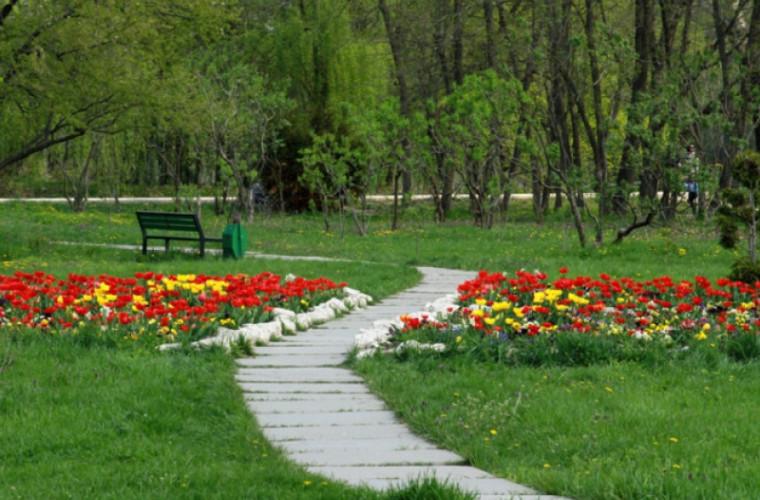 Dendrariul din Chişinău – atracția capitalei (FOTO)