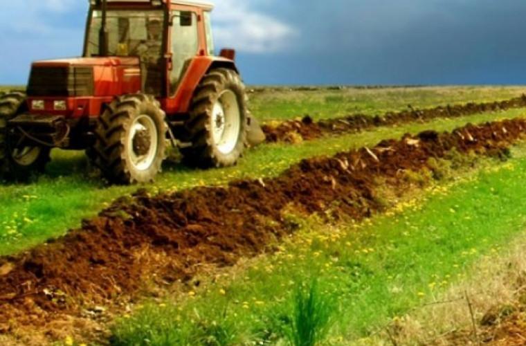 Proprietarii terenurilor agricole din Dubăsari vor primi compensații