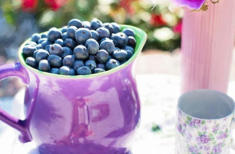Sînt cele mai sănătoase fructe. De ce ar trebui să mîncăm zilnic afine