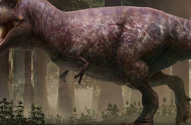 aceasta-este-cea-mai-clara-reconstructie-a-marelui-dinozaur-trex