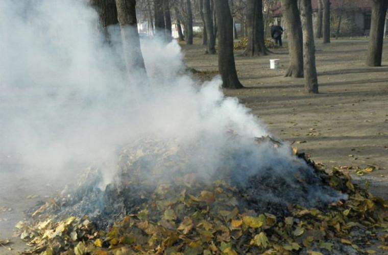 Жители Ботаники задыхаются от дыма. Что говорят власти