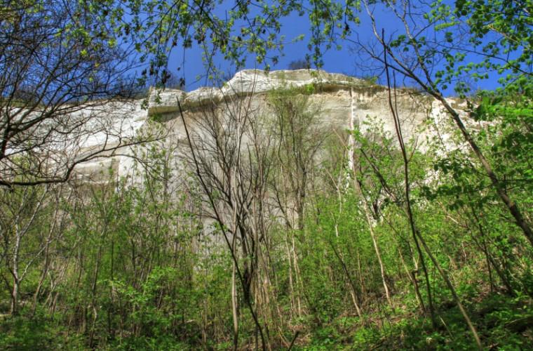 Defileul Bechir -monument al naturii din Republica Moldova