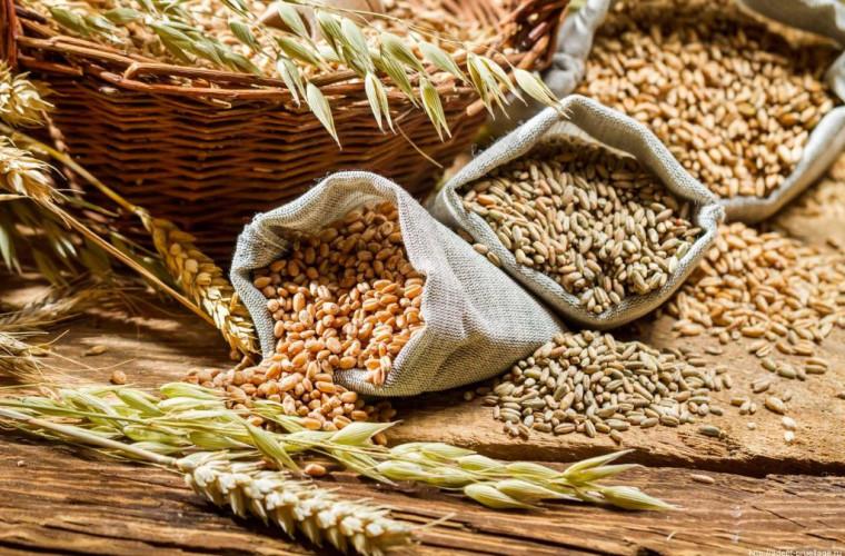 Transnistria a impus taxe de export pentru semințele oleaginoase și cereale