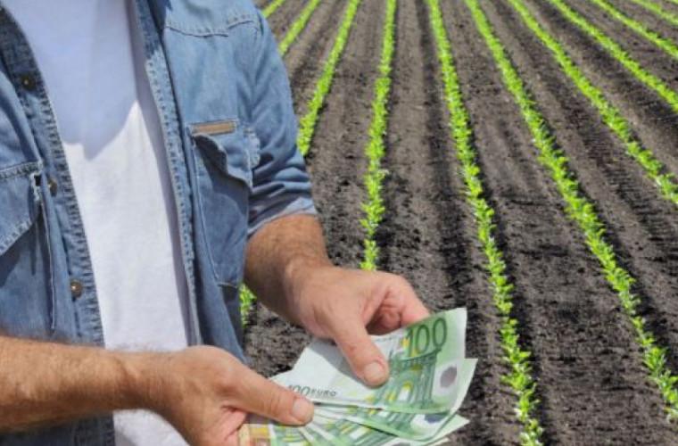 Producătorii agricoli pot depune de astăzi cererile de solicitare a subvențiilor