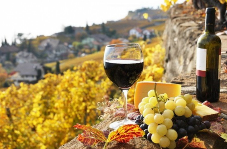 un-forum-al-vinurilor-moldovenesti-va-avea-loc-in-premiera-la-moscova